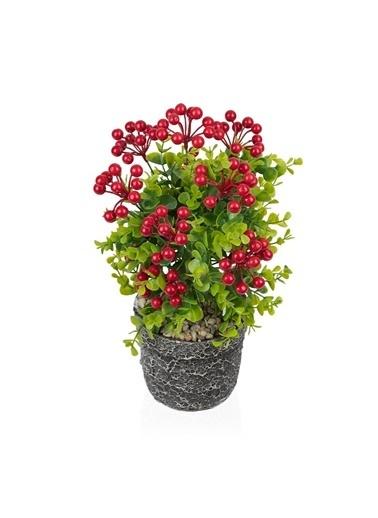 Çiçekmisin Porselen Saksıda Yapay Kokina Ağacı Renkli